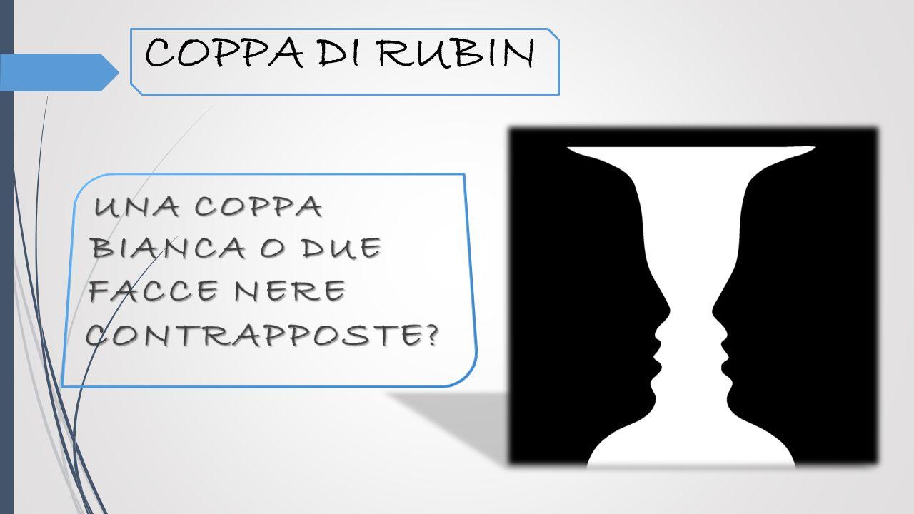 COPPA DI RUBIN