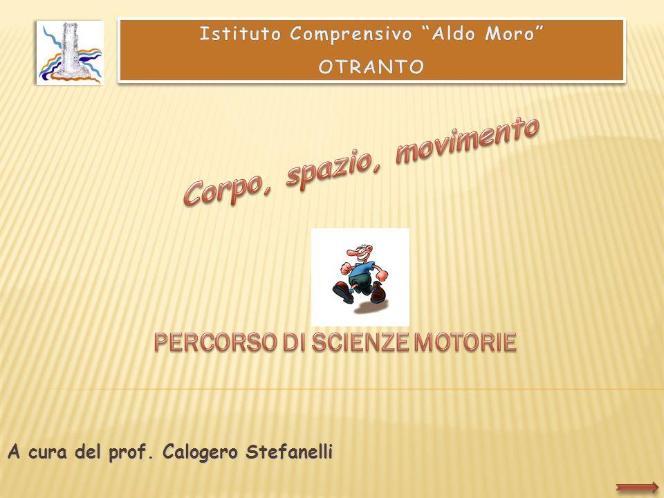 A cura del prof. Calogero Stefanelli
