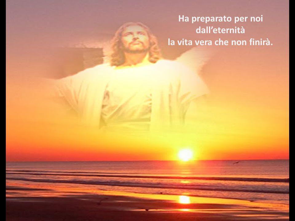 Andiamo incontro a Lui venuto in mezzo a noi. In Lui vediamo l'amore di Dio.