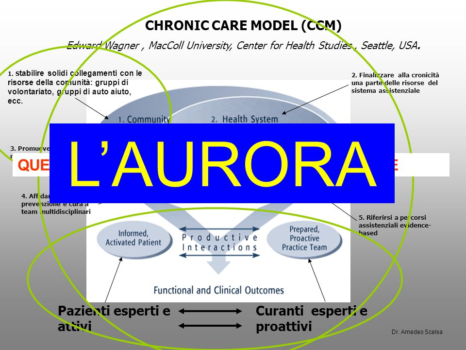 CHRONIC CARE MODEL (CCM) Edward Wagner, MacColl University, Center for Health Studies, Seattle, USA.