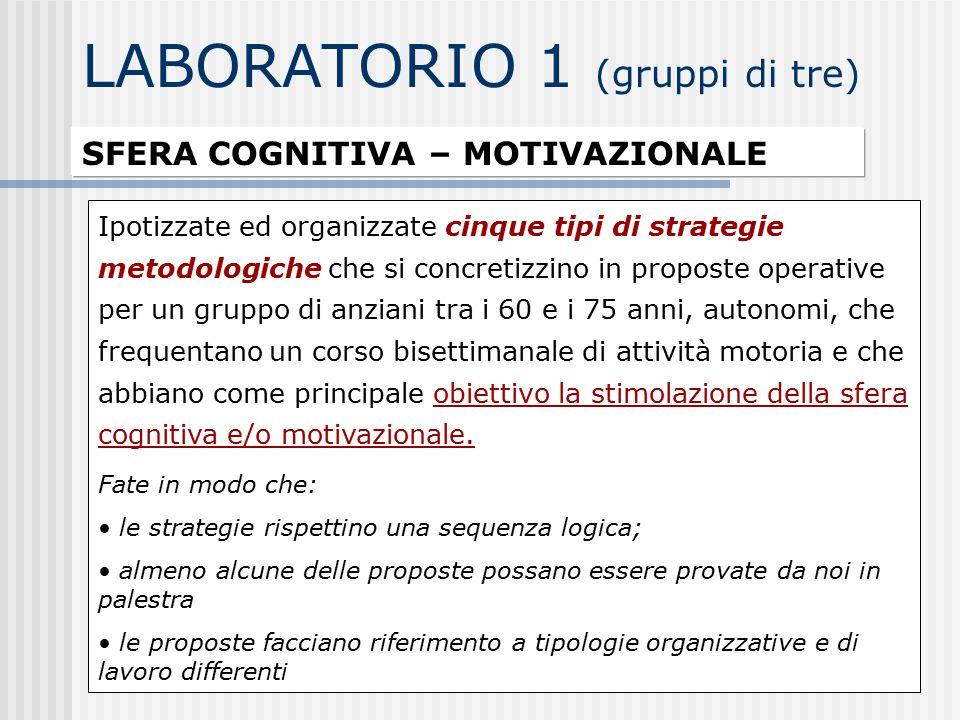 LABORATORIO 1 (gruppi di tre) SFERA COGNITIVA – MOTIVAZIONALE Ipotizzate ed organizzate cinque tipi di strategie metodologiche che si concretizzino in