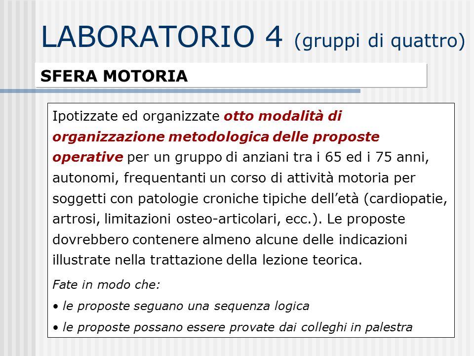 LABORATORIO 4 (gruppi di quattro) SFERA MOTORIA Ipotizzate ed organizzate otto modalità di organizzazione metodologica delle proposte operative per un