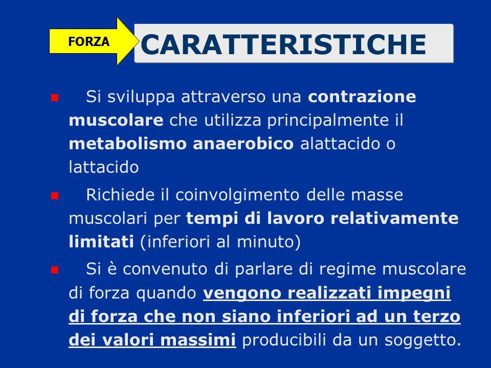 CARATTERISTICHE Si sviluppa attraverso una contrazione muscolare che utilizza principalmente il metabolismo anaerobico alattacido o lattacido Richiede