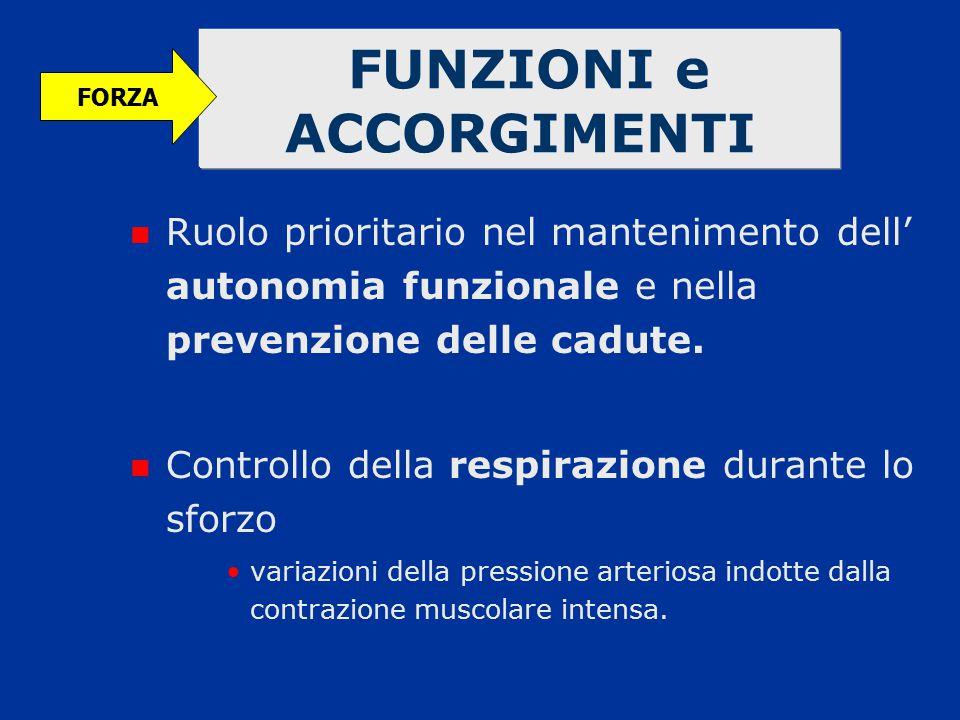 FUNZIONI e ACCORGIMENTI Ruolo prioritario nel mantenimento dell' autonomia funzionale e nella prevenzione delle cadute. Controllo della respirazione d