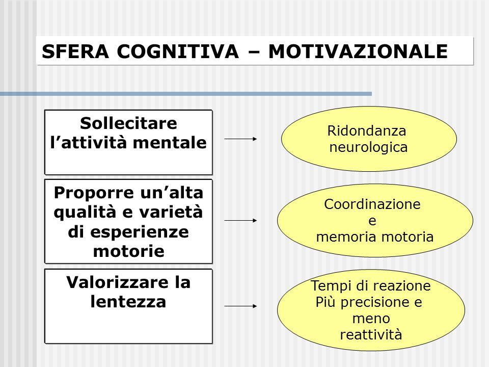 SFERA COGNITIVA – MOTIVAZIONALE Sollecitare l'attività mentale Ridondanza neurologica Proporre un'alta qualità e varietà di esperienze motorie Coordin
