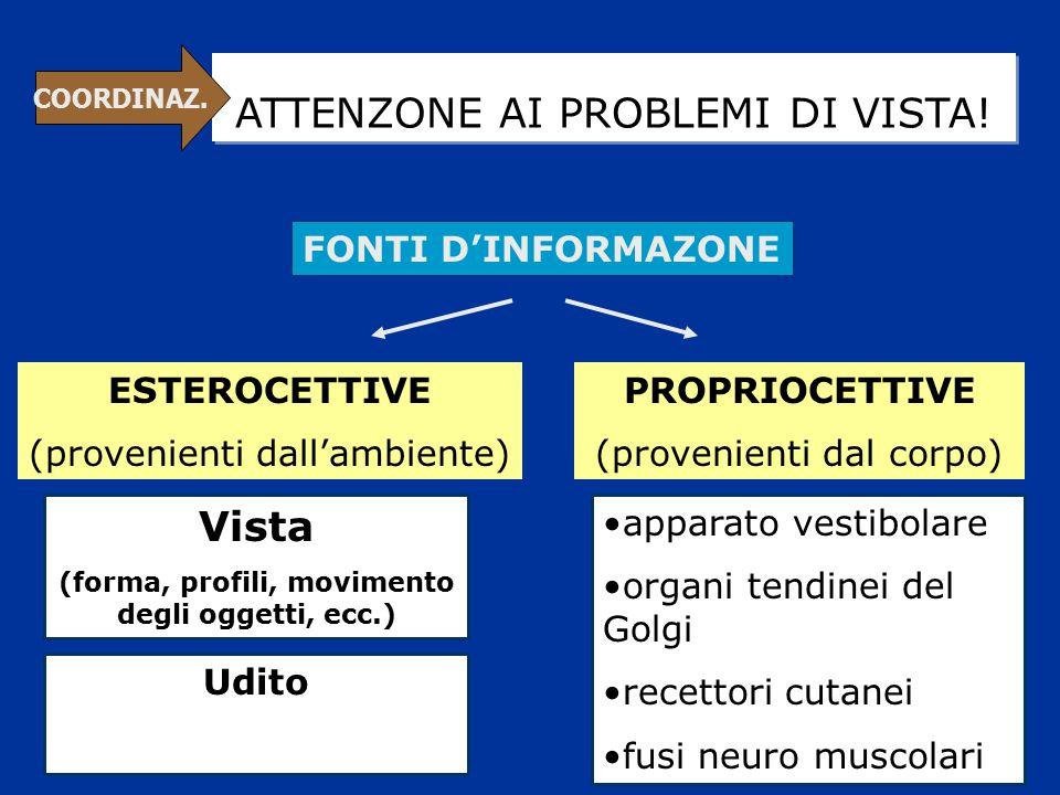 ATTENZONE AI PROBLEMI DI VISTA! FONTI D'INFORMAZONE ESTEROCETTIVE (provenienti dall'ambiente) PROPRIOCETTIVE (provenienti dal corpo) Vista (forma, pro