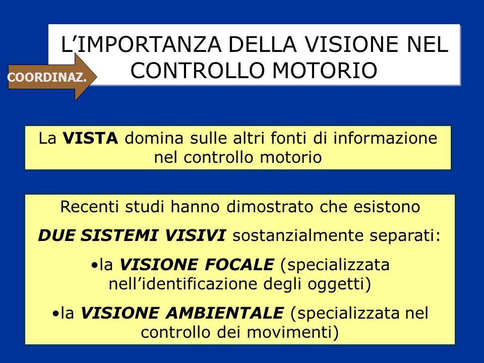 L'IMPORTANZA DELLA VISIONE NEL CONTROLLO MOTORIO La VISTA domina sulle altri fonti di informazione nel controllo motorio Recenti studi hanno dimostrat