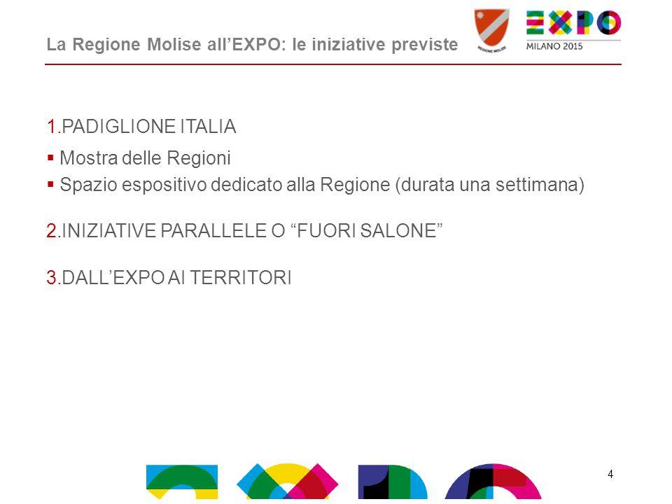 La Regione Molise all'EXPO: le iniziative previste 1.PADIGLIONE ITALIA  Mostra delle Regioni  Spazio espositivo dedicato alla Regione (durata una settimana) 2.INIZIATIVE PARALLELE O FUORI SALONE 3.DALL'EXPO AI TERRITORI 4