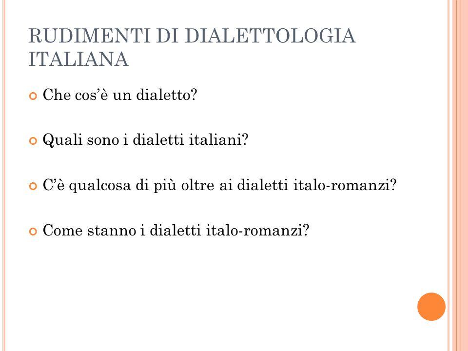 RUDIMENTI DI DIALETTOLOGIA ITALIANA Che cos'è un dialetto? Quali sono i dialetti italiani? C'è qualcosa di più oltre ai dialetti italo-romanzi? Come s