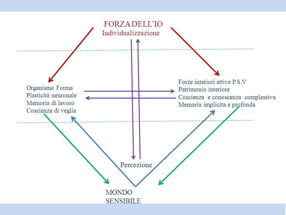 MONDO SENSIBILE Realtà sensibile Percezione Organismo Forma Plasticità neuronale Memoria di lavoro Coscienza di veglia Forze interiori attive P.S.V Pa
