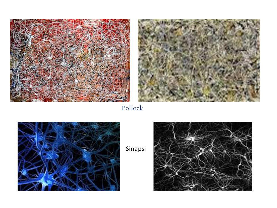 Pollock Sinapsi