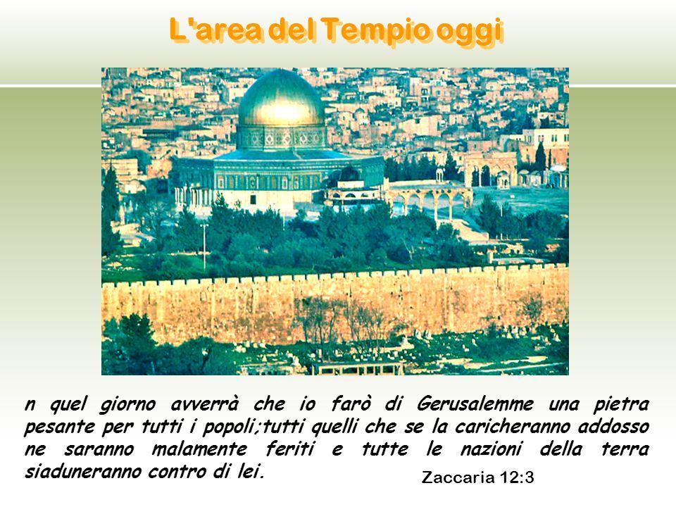 L'area del Tempio oggi n quel giorno avverrà che io farò di Gerusalemme una pietra pesante per tutti i popoli;tutti quelli che se la caricheranno addo