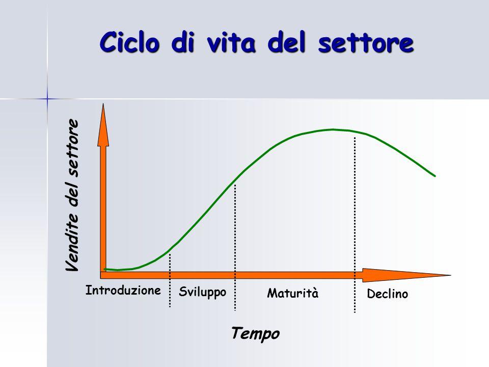 Ciclo di vita del settore Vendite del settore Tempo Sviluppo Declino Maturità Introduzione