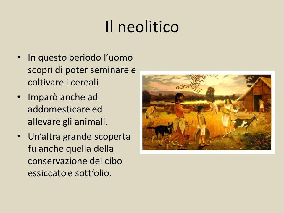Il neolitico In questo periodo l'uomo scoprì di poter seminare e coltivare i cereali Imparò anche ad addomesticare ed allevare gli animali.
