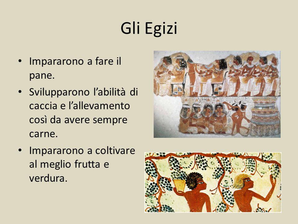 Gli Egizi Impararono a fare il pane. Svilupparono l'abilità di caccia e l'allevamento così da avere sempre carne. Impararono a coltivare al meglio fru