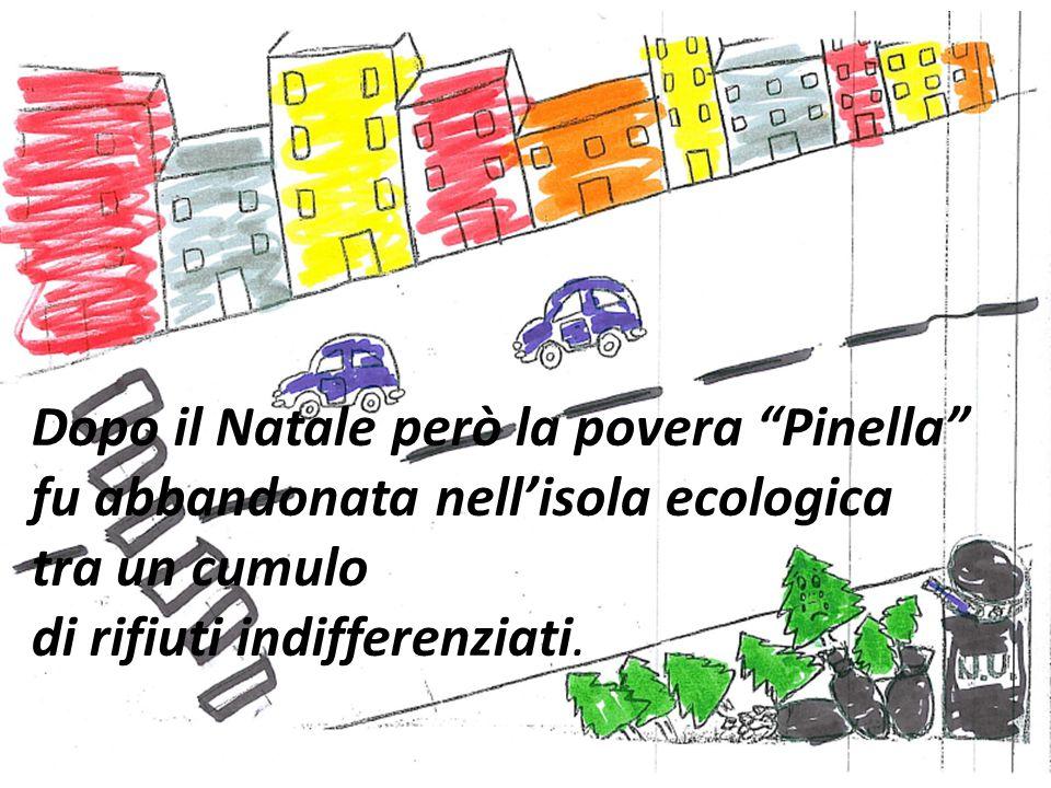 Dopo il Natale però la povera Pinella fu abbandonata nell'isola ecologica tra un cumulo di rifiuti indifferenziati.