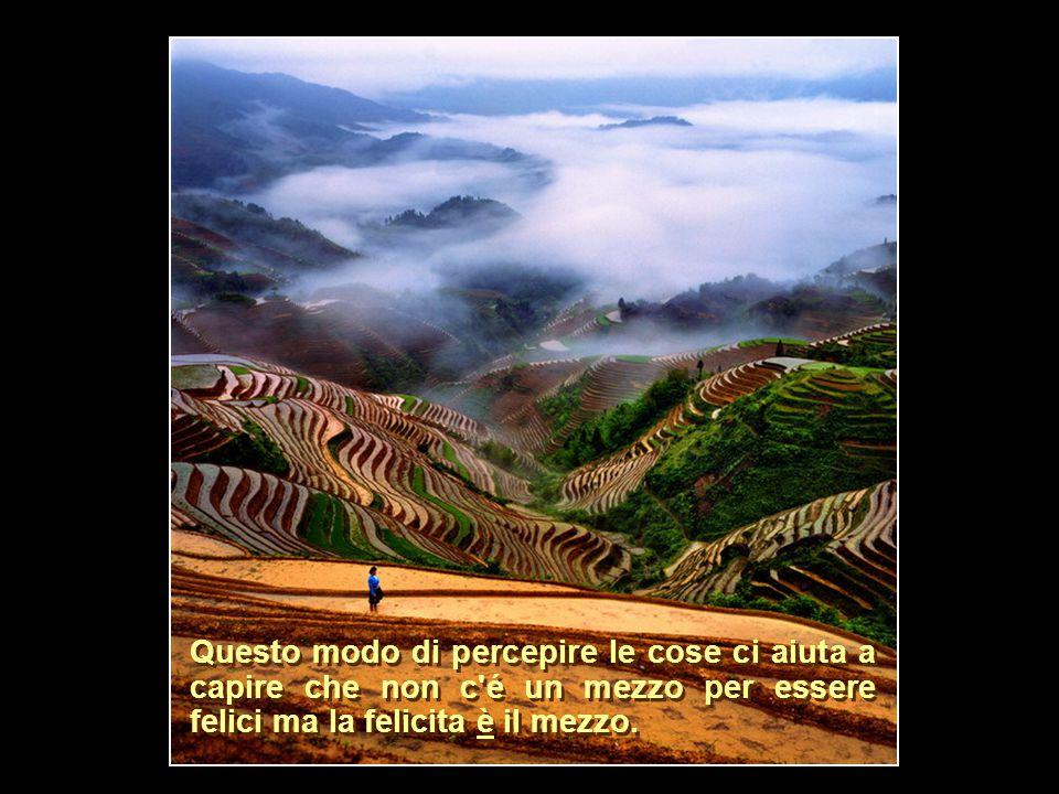 FINE Brano musicale: May It Be di Enya Brano musicale: May It Be di Enya