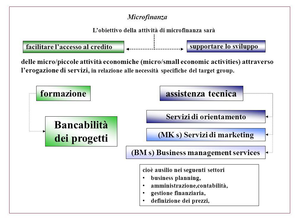 facilitare l'accesso al credito Bancabilità dei progetti Microfinanza (BM s) Business management services Servizi di orientamento (MK s) Servizi di ma