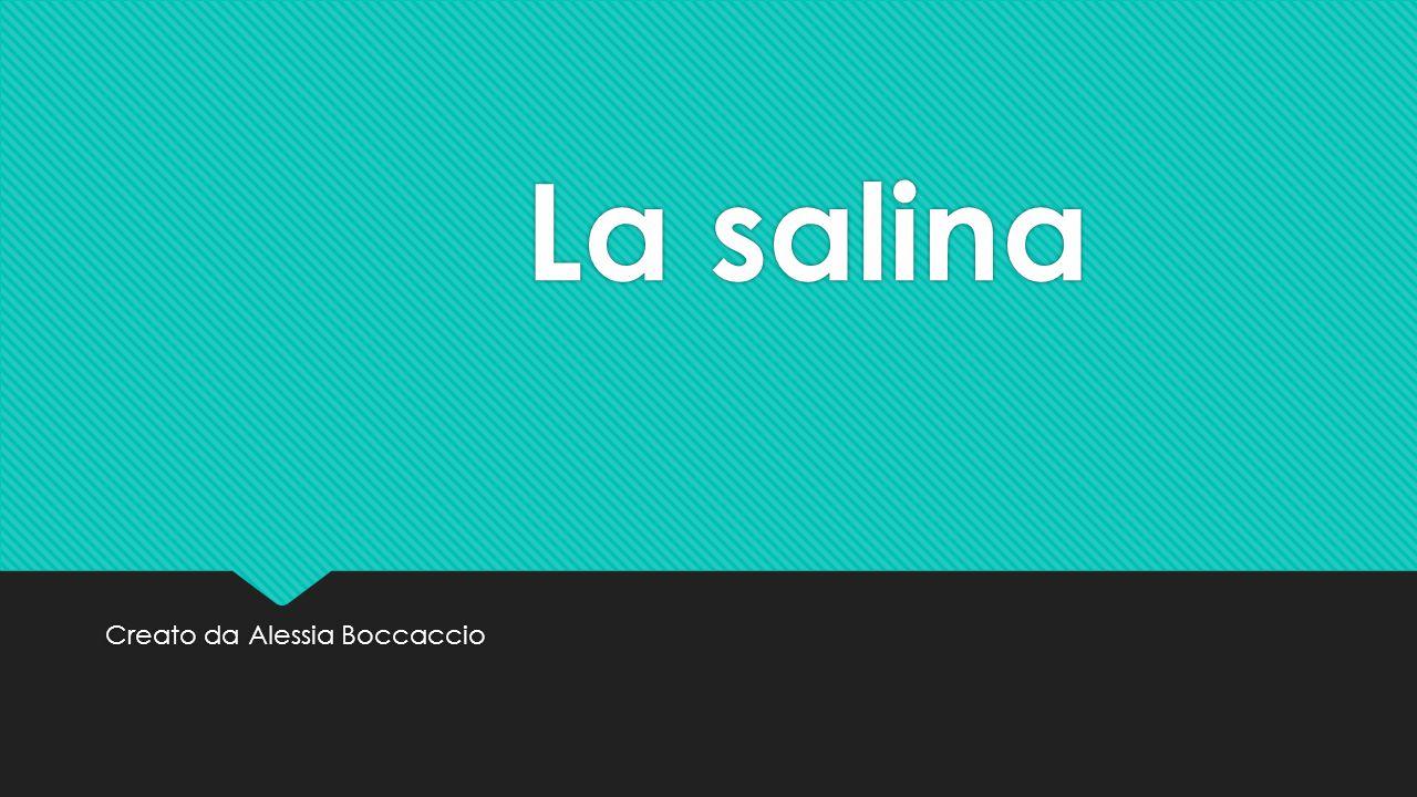 La salina Una salina è un impianto di produzione di sale marino, da acqua di mare, per concentrazione mediate evaporazione naturale dell acqua.