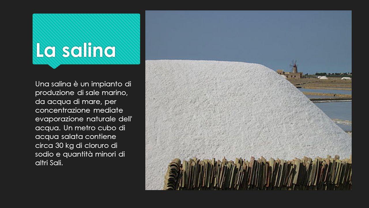 La salina Una salina è un impianto di produzione di sale marino, da acqua di mare, per concentrazione mediate evaporazione naturale dell' acqua. Un me