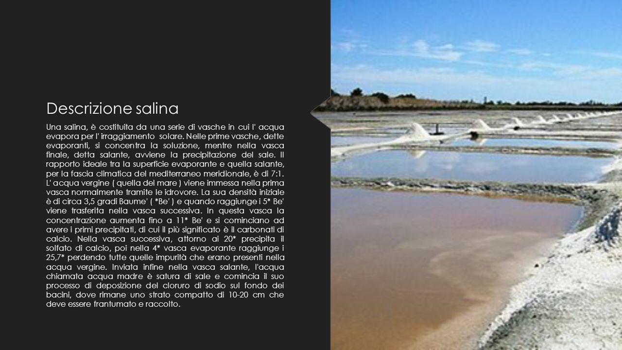 Descrizione salina Una salina, è costituita da una serie di vasche in cui l' acqua evapora per l' irraggiamento solare. Nelle prime vasche, dette evap