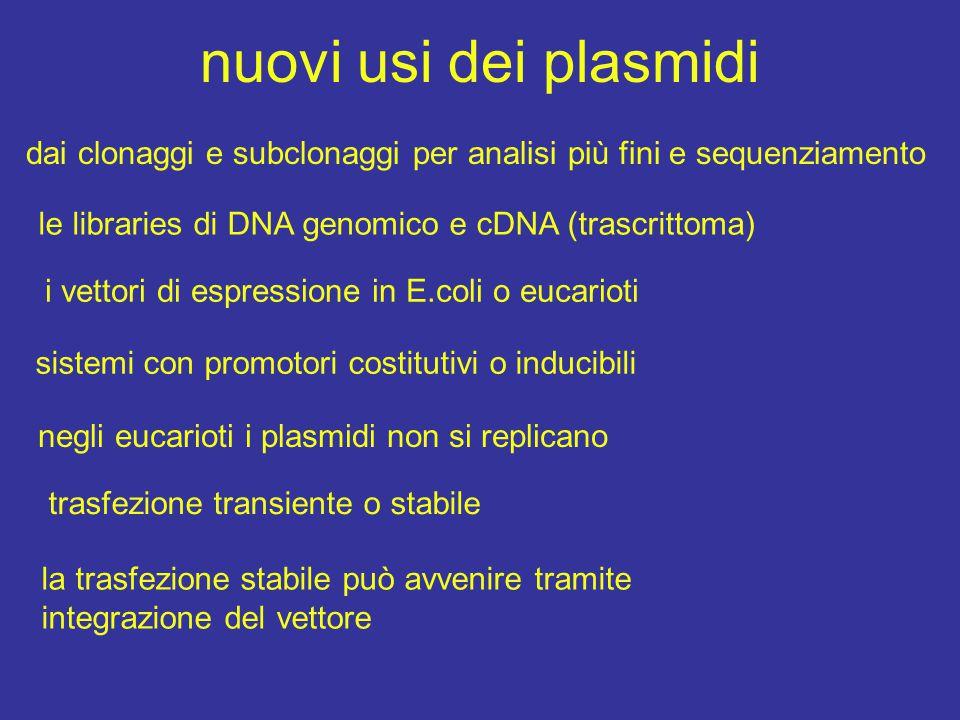nuovi usi dei plasmidi dai clonaggi e subclonaggi per analisi più fini e sequenziamento le libraries di DNA genomico e cDNA (trascrittoma) i vettori di espressione in E.coli o eucarioti sistemi con promotori costitutivi o inducibili negli eucarioti i plasmidi non si replicano trasfezione transiente o stabile la trasfezione stabile può avvenire tramite integrazione del vettore