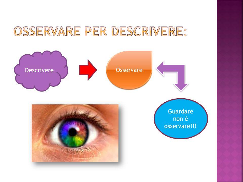 Descrivere Osservare Guardare non è osservare!!!