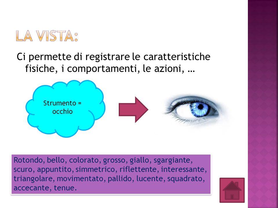 Ci permette di registrare le caratteristiche fisiche, i comportamenti, le azioni, … Strumento = occhio Rotondo, bello, colorato, grosso, giallo, sgarg