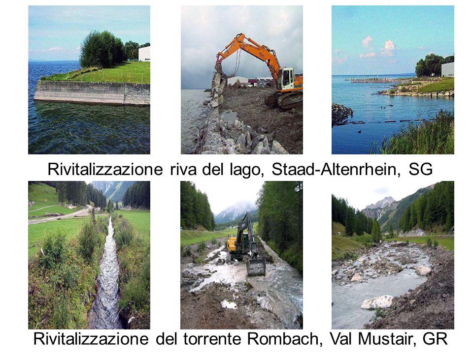 Rivitalizzazione riva del lago, Staad-Altenrhein, SG Rivitalizzazione del torrente Rombach, Val Mustair, GR