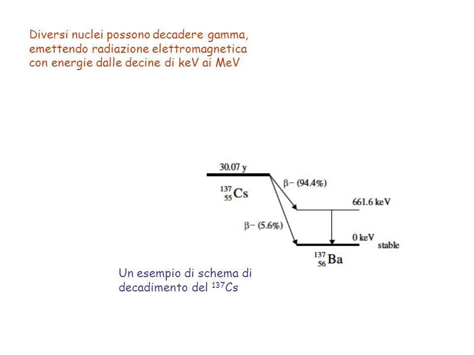 Diversi nuclei possono decadere gamma, emettendo radiazione elettromagnetica con energie dalle decine di keV ai MeV Un esempio di schema di decadiment