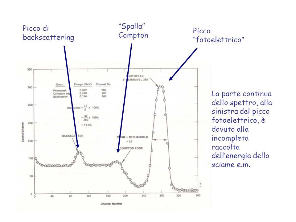 """Picco """"fotoelettrico"""" """"Spalla"""" Compton Picco di backscattering La parte continua dello spettro, alla sinistra del picco fotoelettrico, è dovuto alla i"""