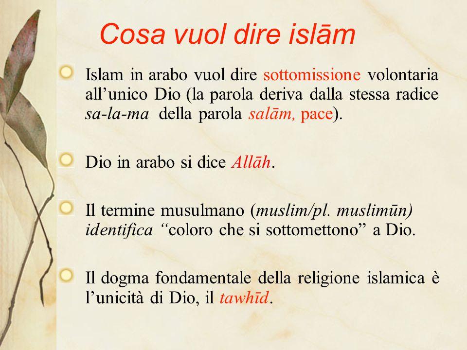 Cosa vuol dire islām Islam in arabo vuol dire sottomissione volontaria all'unico Dio (la parola deriva dalla stessa radice sa-la-ma della parola salām, pace).