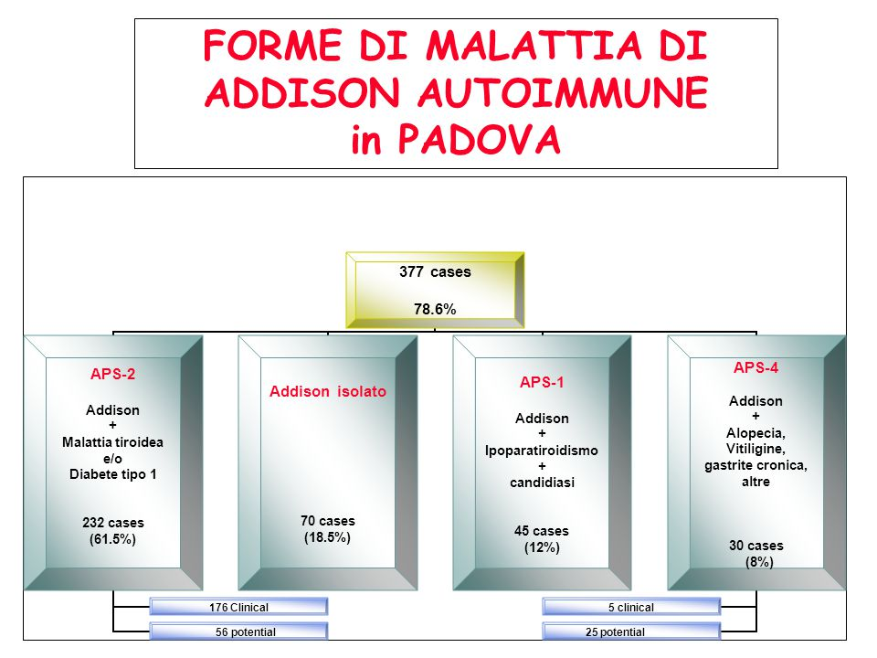 377 cases 78.6% APS-2 Addison + Malattia tiroidea e/o Diabete tipo 1 232 cases (61.5%) 176 Clinical 56 potential Addison isolato 70 cases (18.5%) APS-