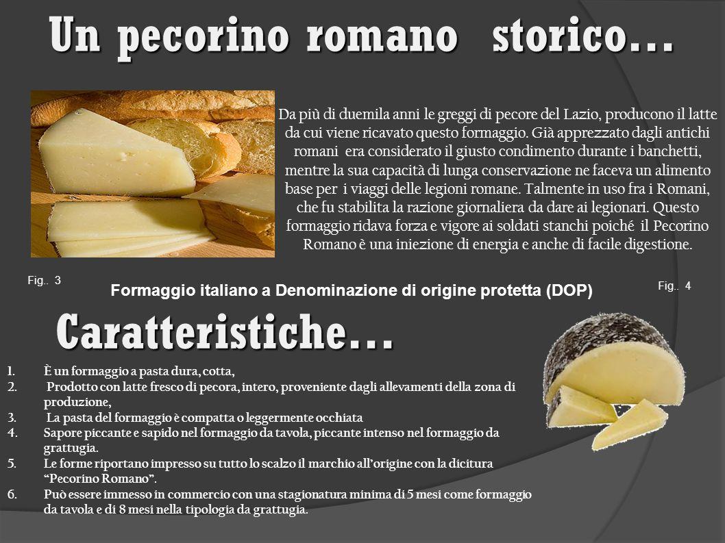 Da più di duemila anni le greggi di pecore del Lazio, producono il latte da cui viene ricavato questo formaggio.