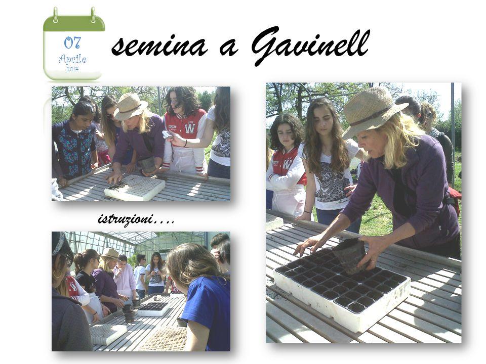 semina a Gavinell istruzioni….