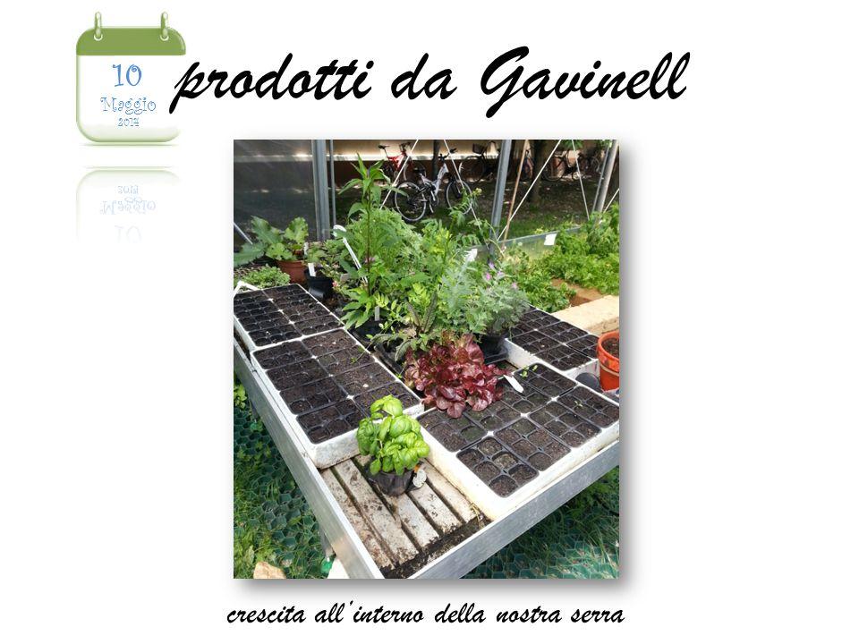 prodotti da Gavinell crescita all'interno della nostra serra