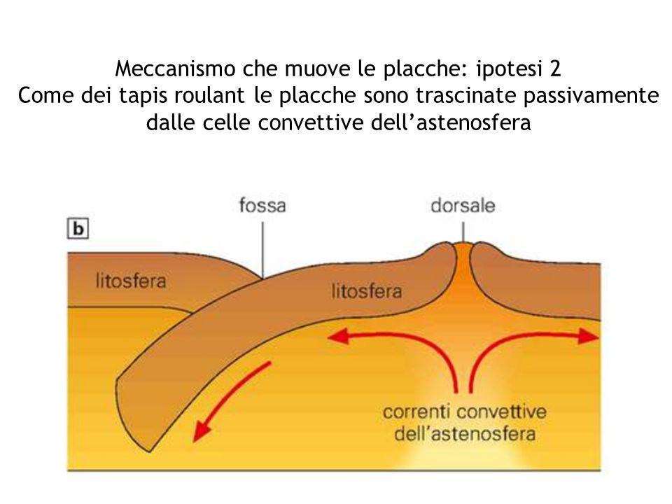 Meccanismo che muove le placche: ipotesi 2 Come dei tapis roulant le placche sono trascinate passivamente dalle celle convettive dell'astenosfera