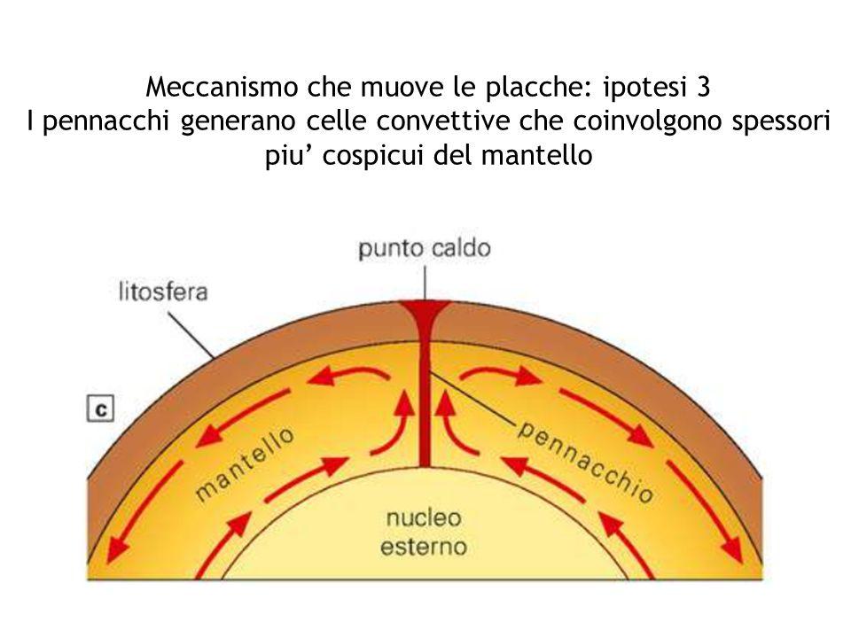 Meccanismo che muove le placche: ipotesi 3 I pennacchi generano celle convettive che coinvolgono spessori piu' cospicui del mantello