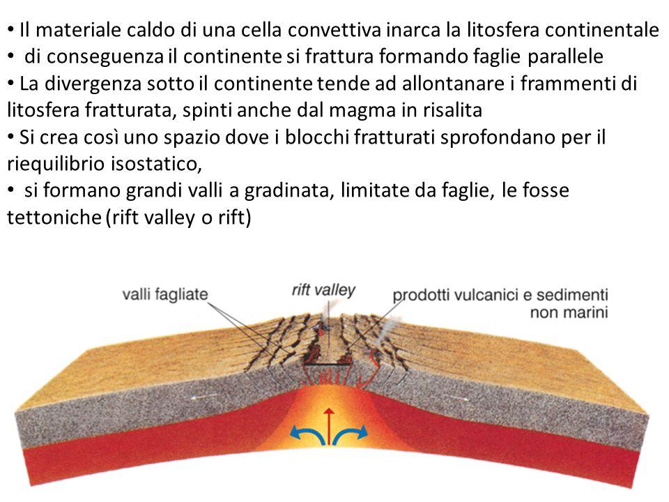 Il materiale caldo di una cella convettiva inarca la litosfera continentale di conseguenza il continente si frattura formando faglie parallele La dive