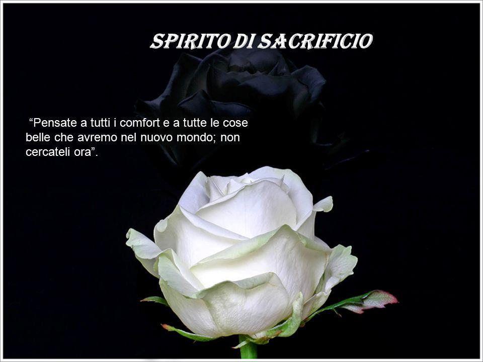 Spirito di sacrificio Pensate a tutti i comfort e a tutte le cose belle che avremo nel nuovo mondo; non cercateli ora .