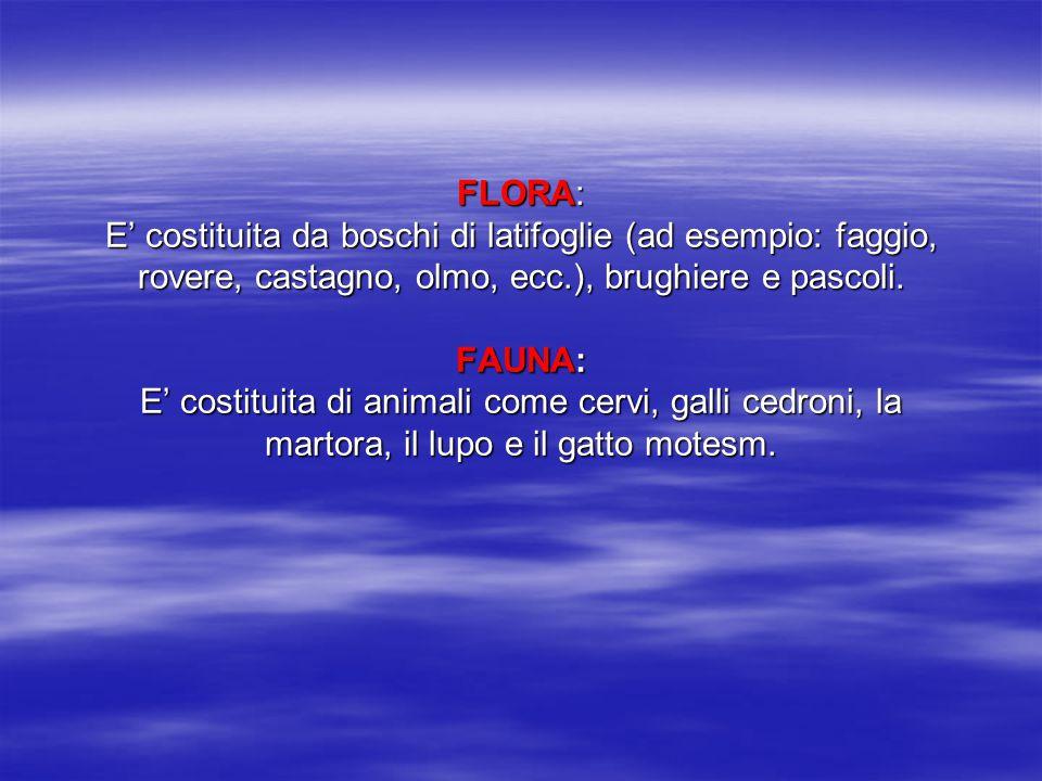 FLORA: E' costituita da boschi di latifoglie (ad esempio: faggio, rovere, castagno, olmo, ecc.), brughiere e pascoli. FAUNA: E' costituita di animali