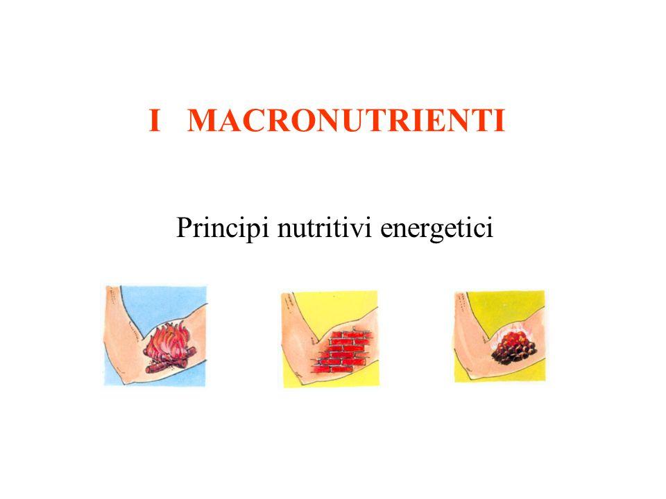 I MACRONUTRIENTI Principi nutritivi energetici