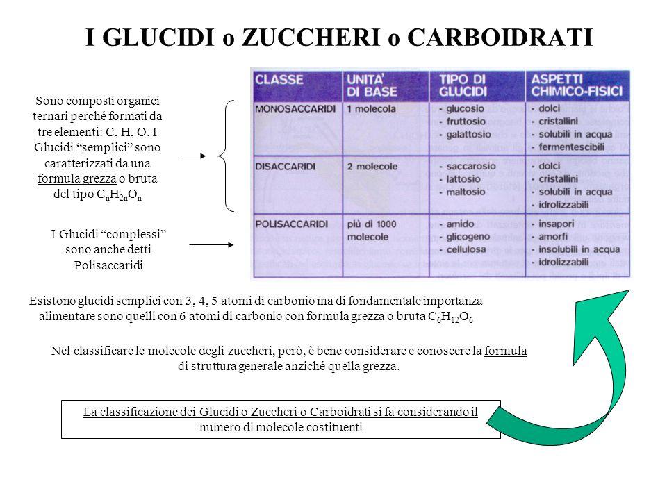 """I GLUCIDI o ZUCCHERI o CARBOIDRATI Sono composti organici ternari perché formati da tre elementi: C, H, O. I Glucidi """"semplici"""" sono caratterizzati da"""