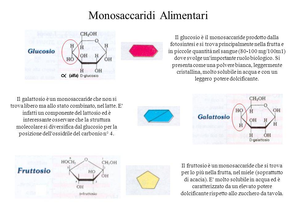 Monosaccaridi Alimentari Il glucosio è il monosaccaride prodotto dalla fotosintesi e si trova principalmente nella frutta e in piccole quantità nel sangue (80-100 mg/100m1) dove svolge un importante ruolo biologico.