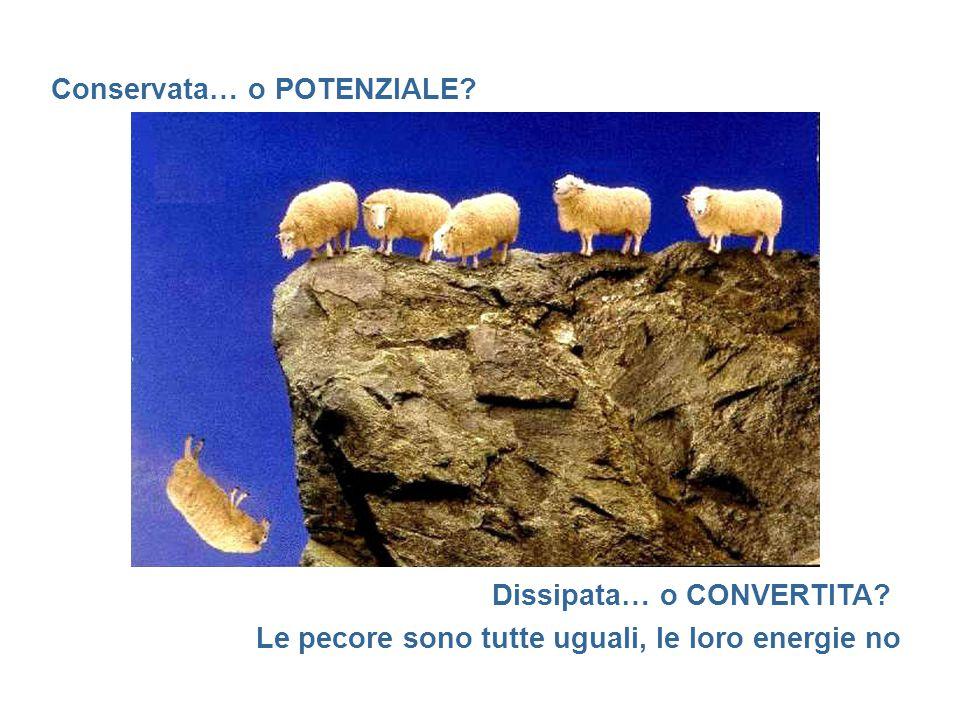 Conservata… o POTENZIALE Dissipata… o CONVERTITA Le pecore sono tutte uguali, le loro energie no