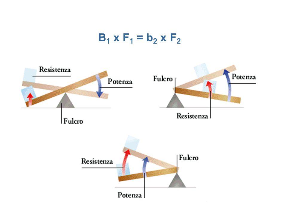 B 1 x F 1 = b 2 x F 2
