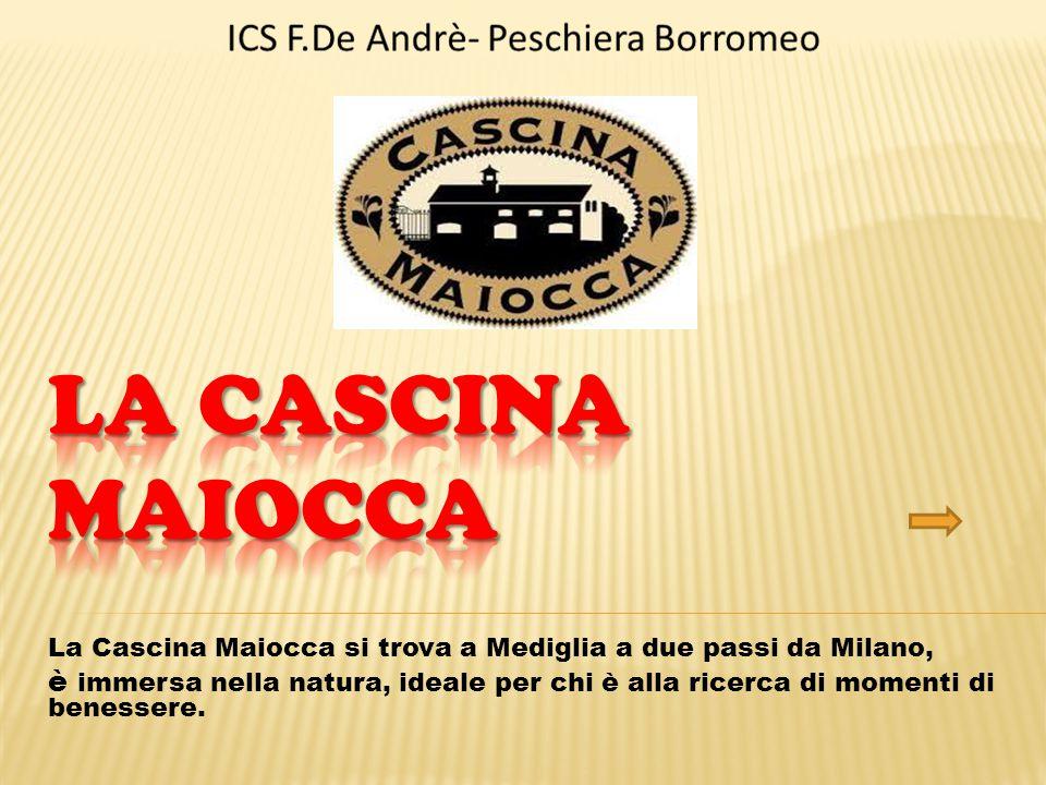 La Cascina Maiocca si trova a Mediglia a due passi da Milano, è immersa nella natura, ideale per chi è alla ricerca di momenti di benessere.