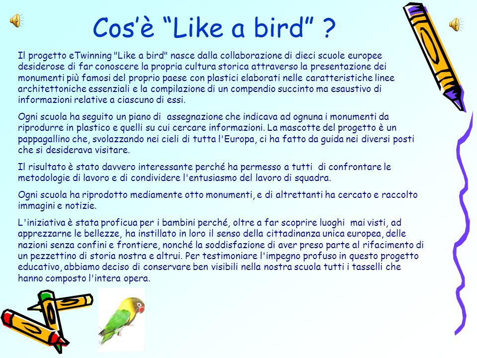 Cos'è Like a bird .