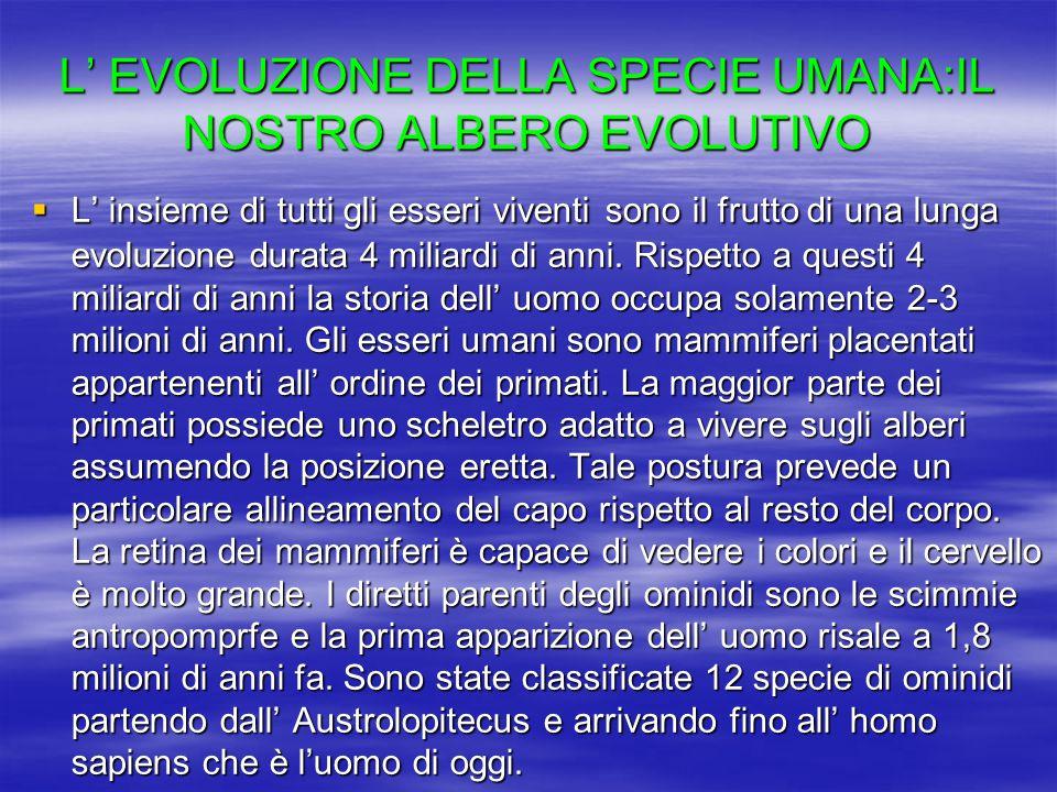 L' EVOLUZIONE DELLA SPECIE UMANA:IL NOSTRO ALBERO EVOLUTIVO  L' insieme di tutti gli esseri viventi sono il frutto di una lunga evoluzione durata 4 m
