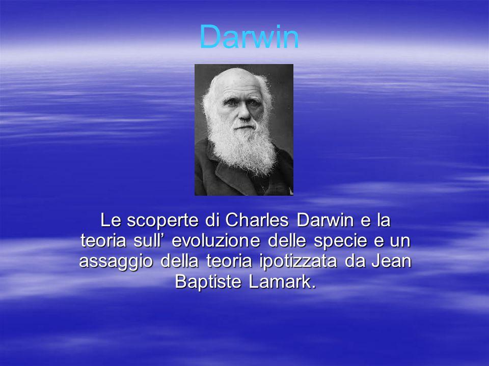 Le scoperte di Charles Darwin e la teoria sull' evoluzione delle specie e un assaggio della teoria ipotizzata da Jean Baptiste Lamark. Darwin